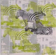 zebragron